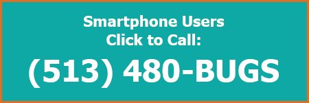 Smartphone User Click to Call